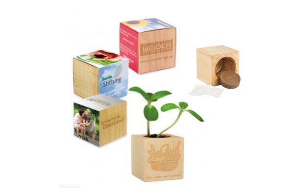 Pot à plante en bois
